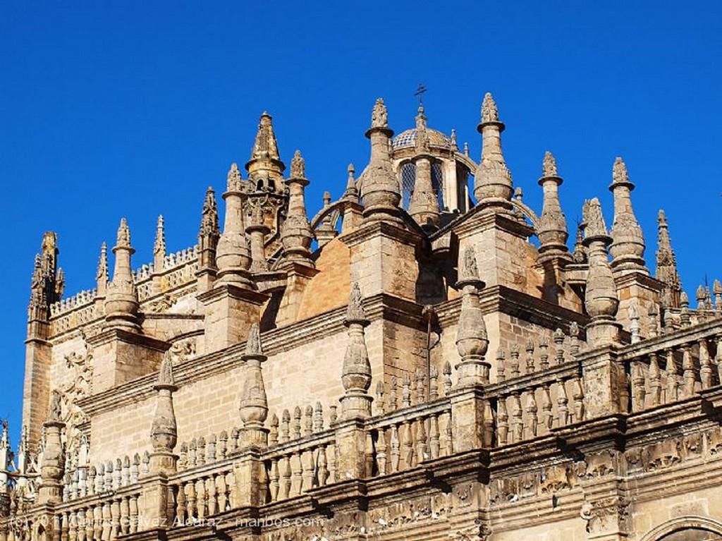 Sevilla Catedral. Sevilla