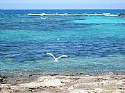 Playa en Formentera, Formentera, España