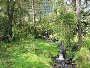 Serra do Corvo Branco, Urubici, Brasil