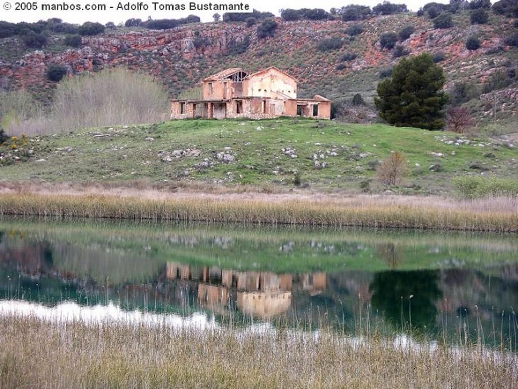 Ruidera Arbol en el agua Albacete