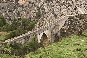 Camara Canon EOS 50D Puente romanico de bocairent hacia el monasterio Felipe Baldovi Borras BOCAIRENT Foto: 18025