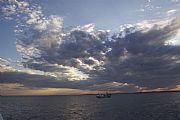 Camara Canon EOS 50D barco pesquero de isla de tabarca Felipe Baldovi Borras ISLA DE TABARCA Foto: 18040