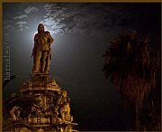 Camara kodak z812is Busto con luna Llena Alex Serra PALERMO Foto: 17482