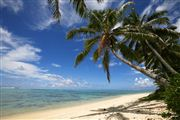 Camara Canon EOS-1Ds Mark III Islas Cook  Islas Cook ISLAS COOK  Foto: 20505
