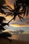 Camara Canon EOS-1Ds Mark III Islas Cook  Islas Cook ISLAS COOK  Foto: 20504