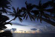 Camara Canon EOS-1Ds Mark III Islas Cook  Islas Cook ISLAS COOK  Foto: 20503