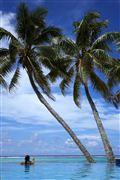 Camara Canon EOS-1Ds Mark III Islas Cook  Islas Cook ISLAS COOK  Foto: 20494