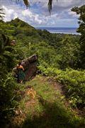Camara Canon EOS-1Ds Mark III Islas Cook  Islas Cook ISLAS COOK  Foto: 20493