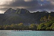 Camara Canon EOS-1Ds Mark III Islas Cook  Islas Cook ISLAS COOK  Foto: 20521