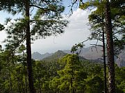 Reserva de Inagua, Gran Canaria, España