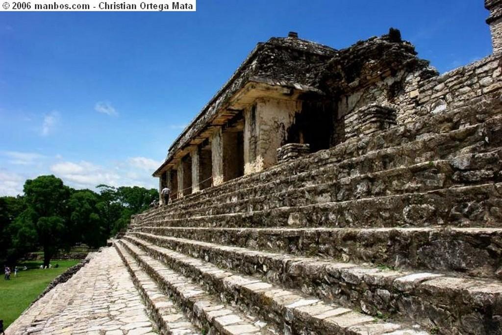 Palenque Civilización Chiapas