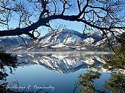Camera Olympus D-550 Lago Meliquina Guillermo F. Fernandez Gallery SAN MARTIN DE LOS ANDES Photo: 14549