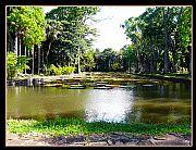 Pamplemousses, Pamplemousses, Mauricio