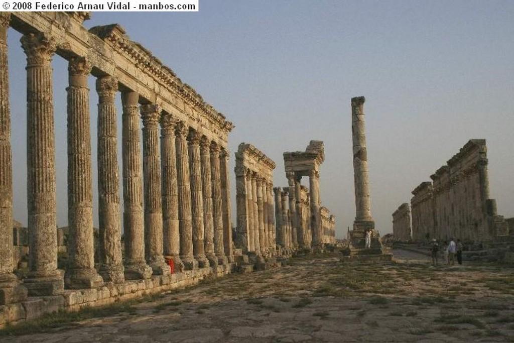Apamea Portico en Aphanea Apamea
