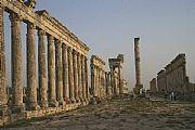Camara Canon EOS 350D DIGITAL Ciudad romana en Aphanea Federico Arnau Vidal APAMEA Foto: 17419