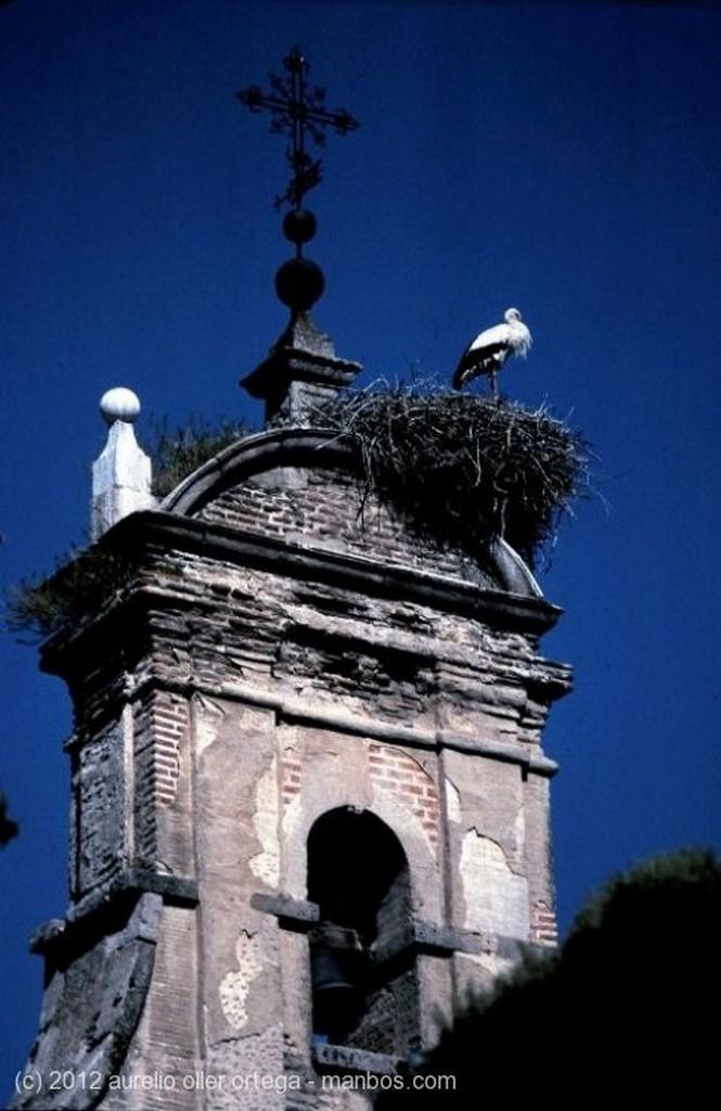 San Lorenzo de El Escorial Nevada Madrid