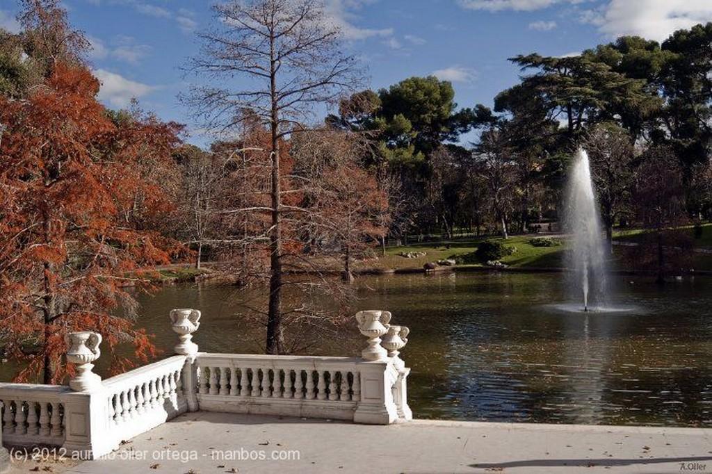 Madrid Columnas Monumento A XII Madrid