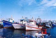 Puerto pesquero, Tarragona, España