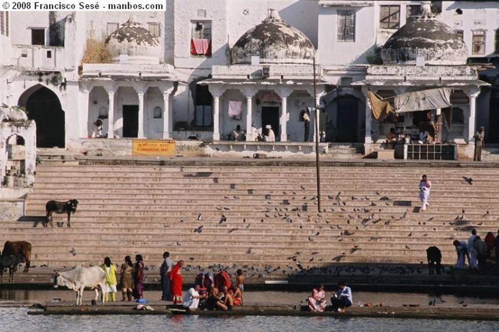 Udaipur Palacio Real  - Udaipur Rajastan