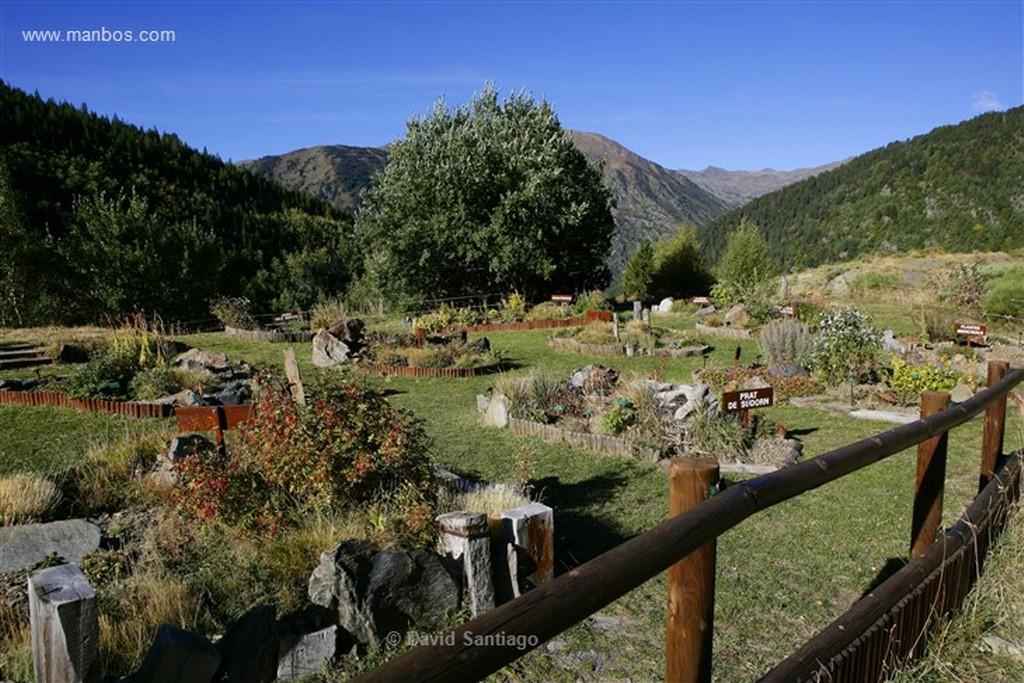 Vall de Sorteny jardin botanico en el Parque Natural de la Vall de Sorteny Andorra