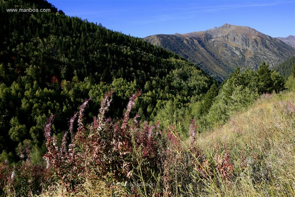 Andorra Parque Natural de la Vall de Sorteny Andorra