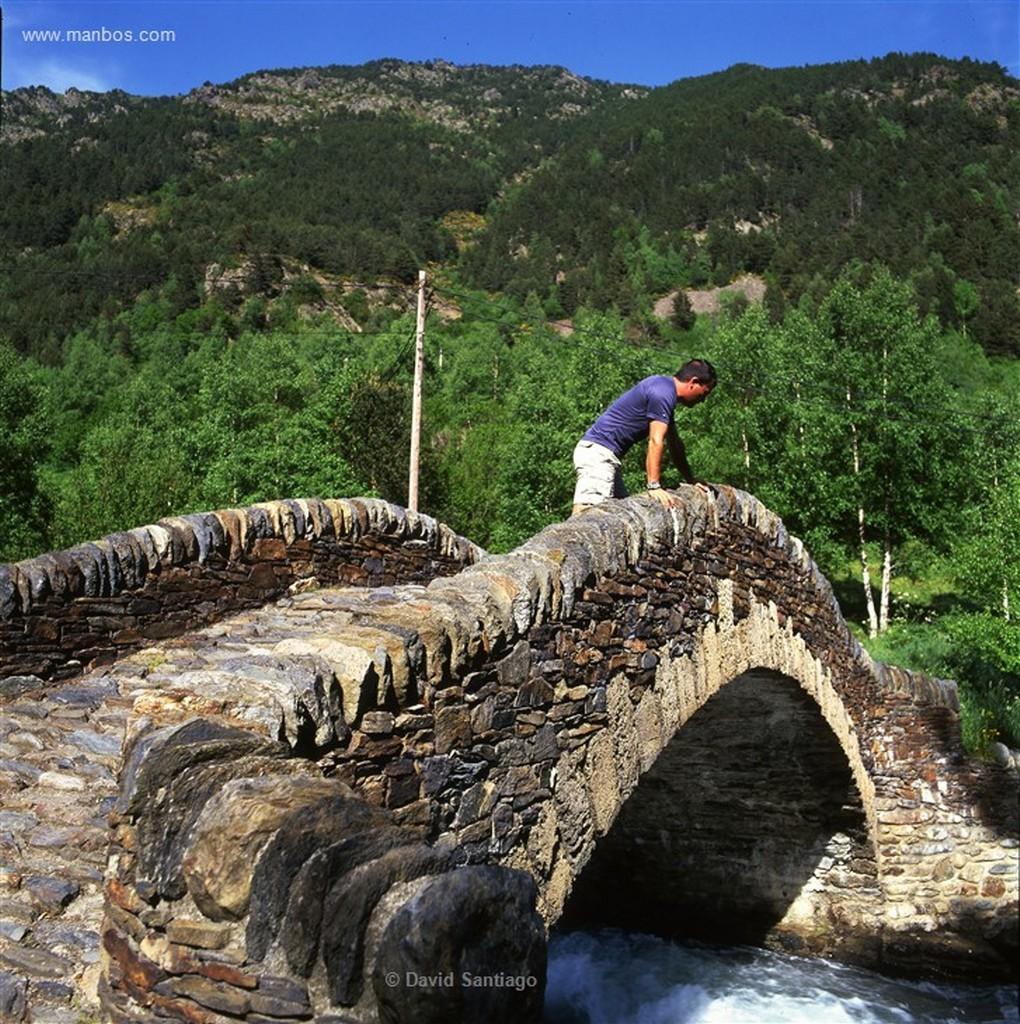 Andorra Pic del Brossos poblado de hayas pinos y abetos Andorra