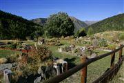 Camara Canon EOS-1Ds Mark II jardin botanico en el Parque Natural de la Vall de Sorteny Andorra VALL DE SORTENY Foto: 32289