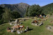 Camara Canon EOS-1Ds Mark II jardin botanico en el Parque Natural de la Vall de Sorteny Andorra VALL DE SORTENY Foto: 32288