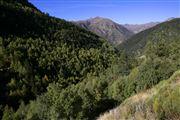 Camara Canon EOS-1Ds Mark II Parque Natural de la Vall de Sorteny Andorra ANDORRA Foto: 32218