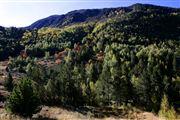 Camara Canon EOS-1Ds Mark II Parque Natural de la Vall de Sorteny Andorra ANDORRA Foto: 32217