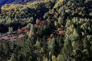 Camara Canon EOS-1Ds Mark II Parque Natural de la Vall de Sorteny Andorra ANDORRA Foto: 32216