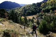 Camara Canon EOS-1Ds Mark II Parque Natural de la Vall de Sorteny Andorra ANDORRA Foto: 32215