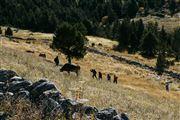 Camara Canon EOS-1Ds Mark II Parque Natural de la Vall de Sorteny Andorra ANDORRA Foto: 32210