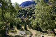 Camara Canon EOS-1Ds Mark II Parque Natural de la Vall de Sorteny Andorra ANDORRA Foto: 32208