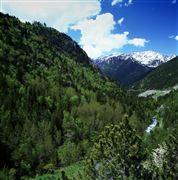 Camara 0 Pic del Brossos río Tristaina y la Serrat de Coma Obaga y de la Pleta Vella Andorra ANDORRA Foto: 32190