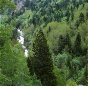 Camera 0 Pic del Brossos río Tristaina y la Serrat de Coma Obaga y de la Pleta Vella Andorra ANDORRA Photo: 32191