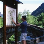 Camara 0 PONT DE L´ESTARELL ENTRE SERRAT Y LES SALINES Andorra ANDORRA Foto: 32192