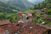 Camara Canon EOS 5D Riospaso - valle del Huerna - asturias Asturias RIOPASO Foto: 31780