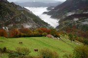 Camara Canon EOS 5D Valle de Huerna - asturias Asturias VALLE DE HUERNA Foto: 31662