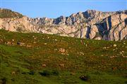 Camara Canon EOS 5D Valle de Huerna - asturias Asturias VALLE DE HUERNA Foto: 31656