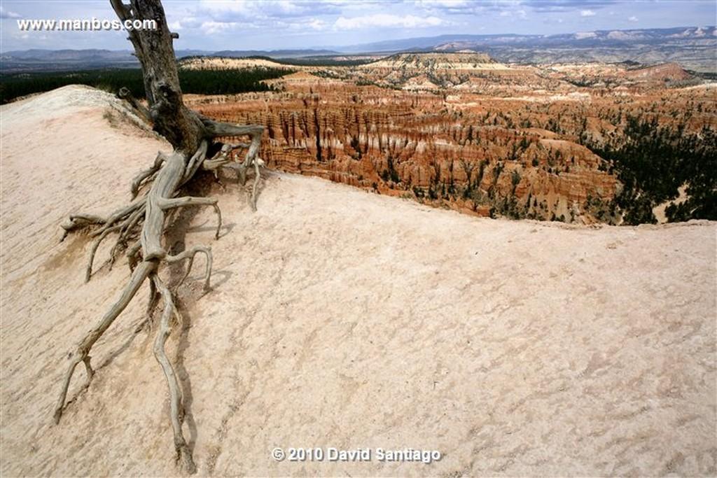 Bryce Canyon  Bryce Canyon National Park Eeuu  Utah