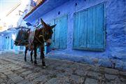 Foto de Chaouen, Marruecos - Chaouen