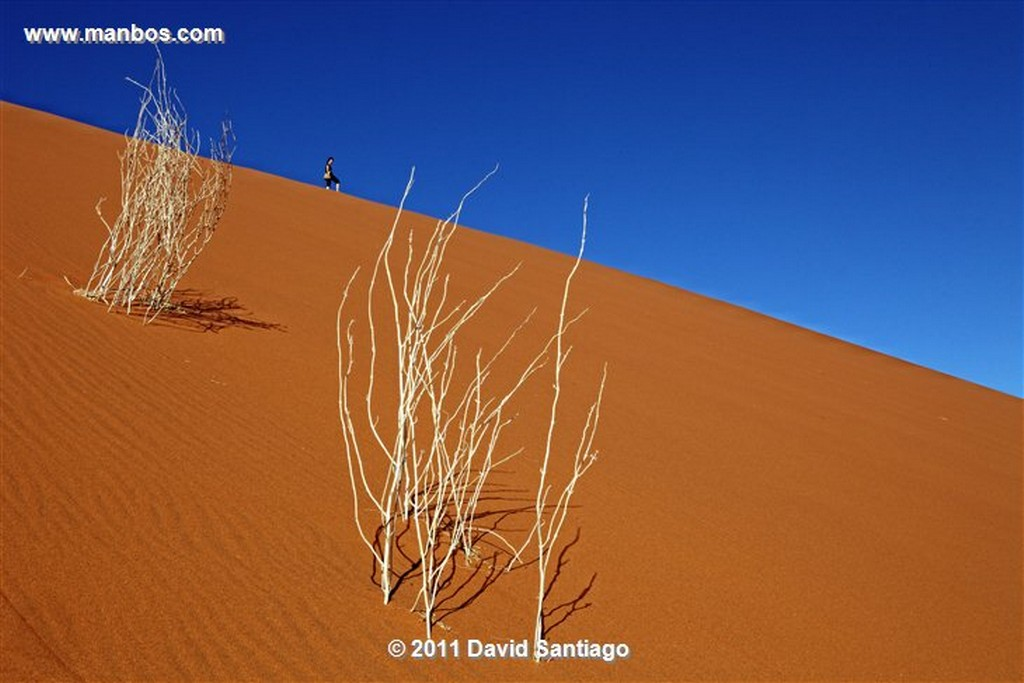 Namibia Namibia Parque Nacional Desierto de Namibia  Namibia