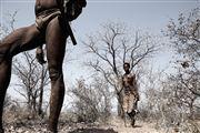 Kalahari Desert, Namibia, Namibia