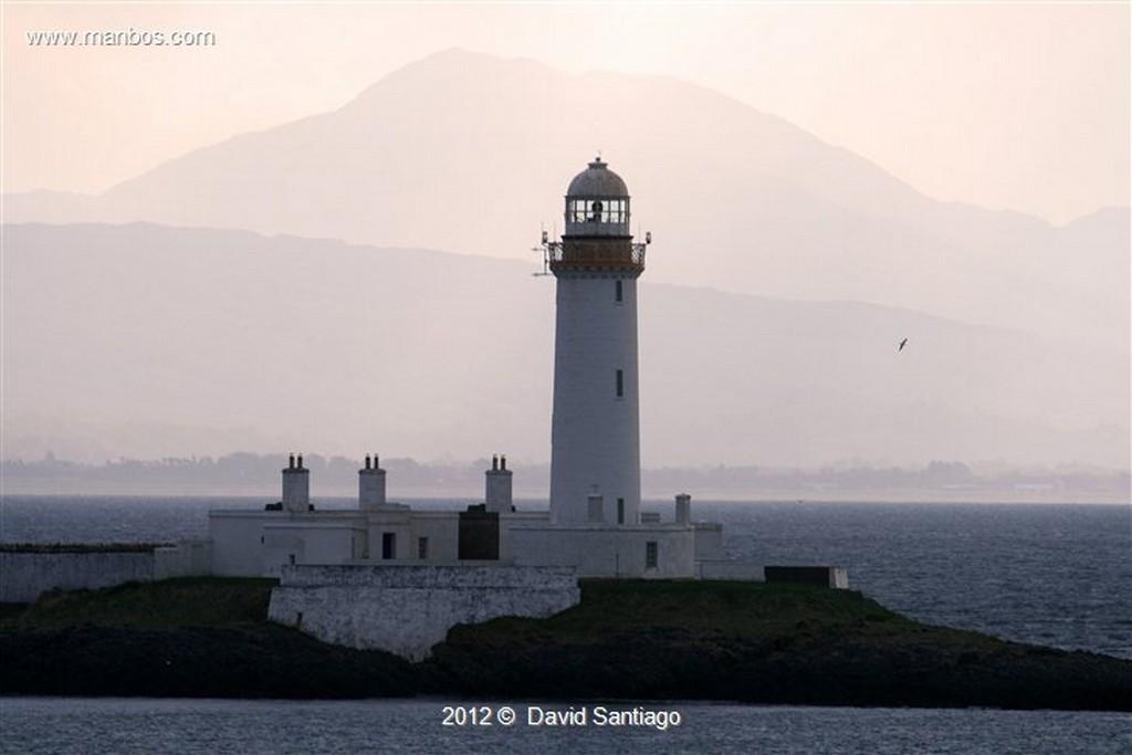 Isle of Mull Gaviota Sombria en La Isla de  mull - escocia Isle of Mull