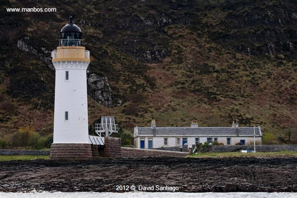 Isle of Mull Carbonero en La Isla de  mull - escocia Isle of Mull