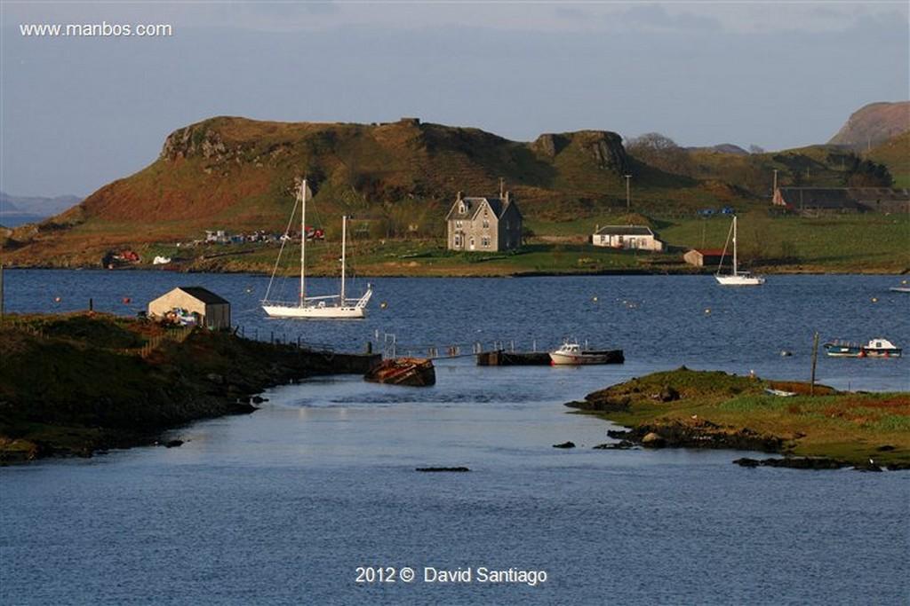 Isle of Mull Pinzon en La Isla de  mull - escocia Isle of Mull