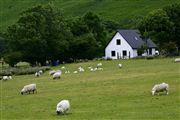 Lochranza, Lochranza, Reino Unido