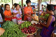 Photo of Palawan, Philippines - Market In el Nido