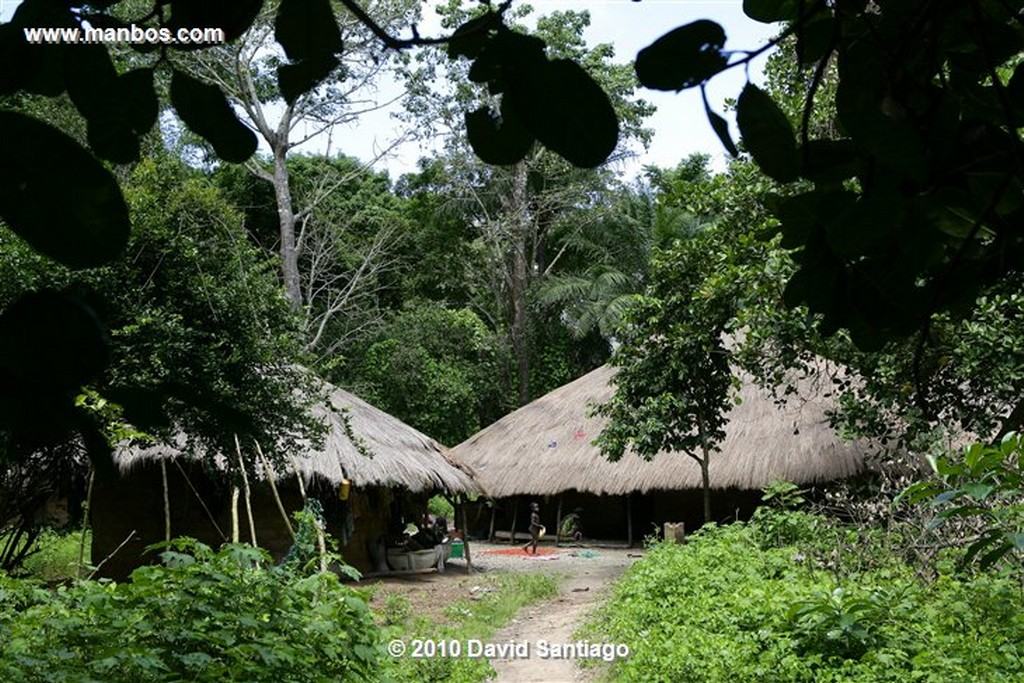 Islas Bijagos  Ambuduco Parque Nacional Orango Bijagos Guinea Bissau  Islas Bijagos